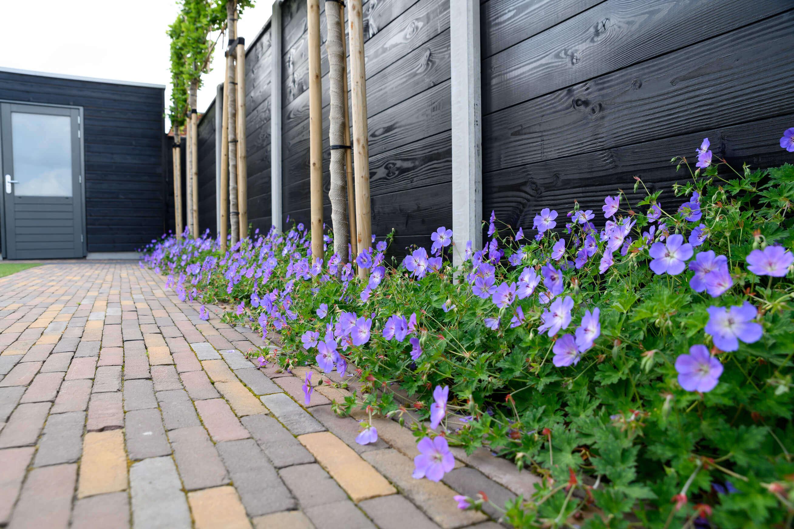 Strakke kindvriendelijke achtertuin met kunstgras in Veenendaal